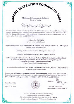 REAL EXPORTS - EIC CERTIFICATE